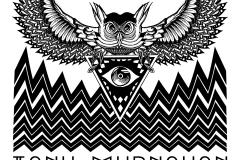 Owlluminati Design